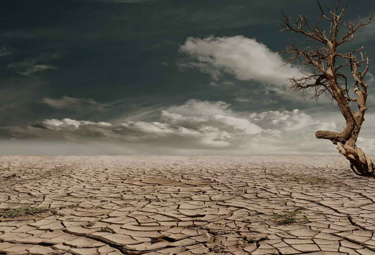 What's the Diagnosis? What the IPCC's Sixth Assessment Report on Climate Change might mean for FutureAction